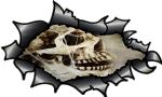 Ripped Torn Carbon Fibre Fiber Design With Creepy Gothic Skull & Cobwebs Motif External Vinyl Car Sticker 150x90mm